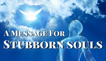 A Message for Stubborn Souls