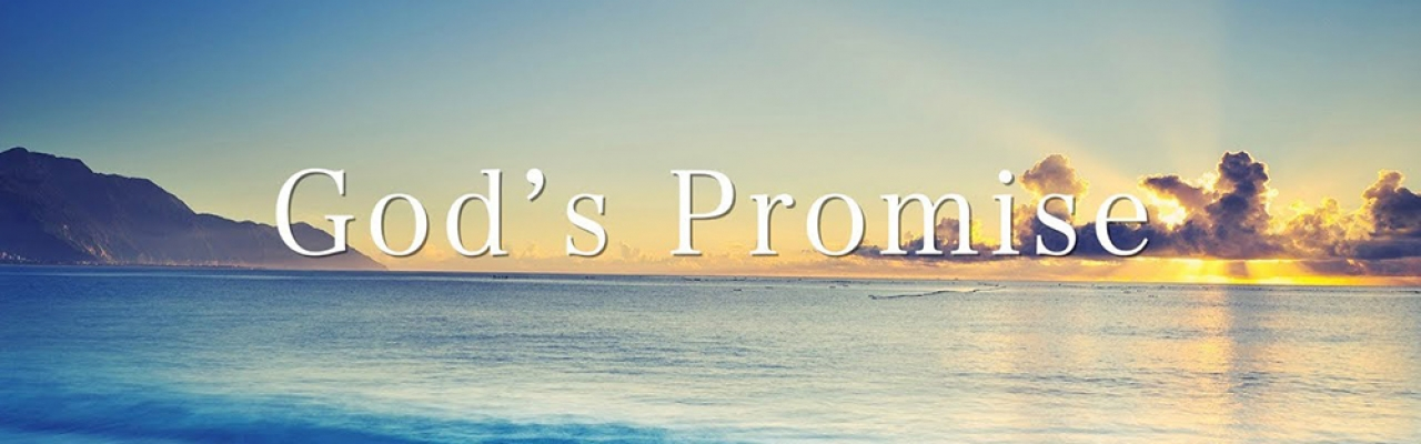 Drum Roll Of Promise